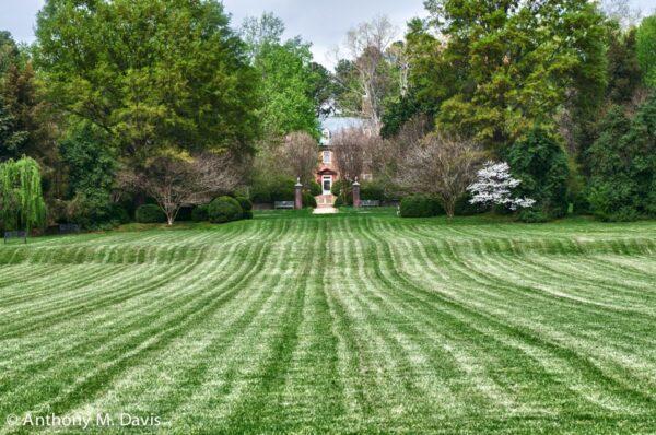 Berkeley Lawn
