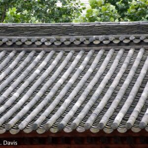 Buddhist Temple Roof