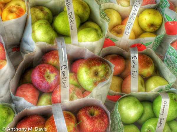 Apples in North Carolina